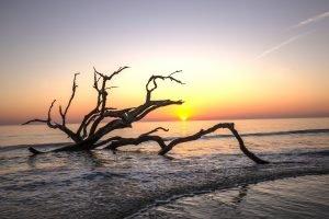 sunrise on Jekyll Island Beach